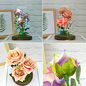 Chercherr Eternal Rose, Artificial Flower Romantic Glass Rose Red Silk Rose Led Light Fallen Petal in Glass Dome on Wooden Base for Holiday Party Wedding Anniversary DIY Home Garden Decor 113