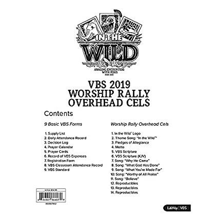 Amazon com: Worship Rally Overhead Cels - in The Wild VBS by