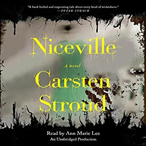 Niceville Audiobook