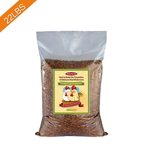 22 LB Dried Mealworms Bulk for Wild Birds, Chicken, Duck and more (2 bags of 11LBS)