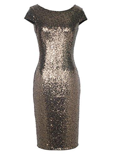 Dianshang Dream Women's 1920s Cap Sleeve Gatsby Sequin Cocktail Vintage Dress