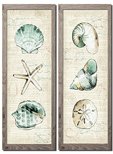 Beautiful Spa Shells; Conch, Starfish, Sand Dollar and Unicorn Shell by Pel Studio; Coastal Décor; Two distressed framed 6x18in Prints; Ready to hang! Tan/Teal