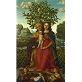 high quality polyster Canvas ,the Reproductions Art Decorative Prints on Canvas of oil painting 'Gerolamo dai Libri The Virgin and Child with Saint Anne ', 24 x 41 inch / 61 x 103 cm is best for Hallway decor and Home decoration and Gifts