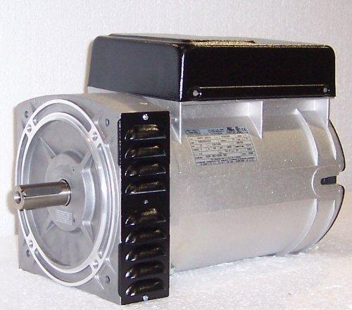 (Belt Driven MeccAlte 7800/9200 Watt Generator Head #S16F-180BD)