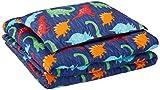 AmazonBasics Kid's Comforter Set - Soft, Easy-Wash Microfiber - Twin, Multi-Color Dinosaurs