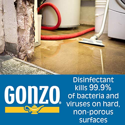 Gonzo Natural Magic Disinfectant Disinfect Deodorize and Clean Your Home, Citrus 24 Ounce, Ounce, Citrus, 24 Fl Oz