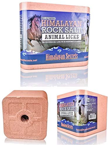 11 LB Compressed Himalayan Salt Lick for Horse, Cow, Goat, etc. Made from Specially Selected Higher Quality Himalayan Salt - Evenly Distributed Minerals - 100% Pure & Natural