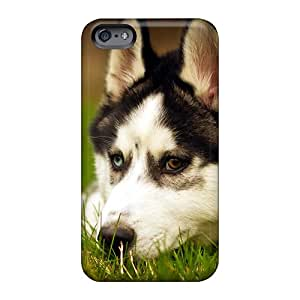 TrevorBahri Apple Iphone 6 Anti-Scratch Hard Phone Covers Support Personal Customs HD Husky Dog Resting Pictures [Drd459ORSG]