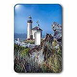 3dRose LSP_279284_1 USA, Oregon. Scenic of Umpqua River Lighthouse Toggle Switch,