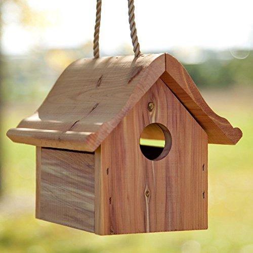Perky Pet Wren Bird House