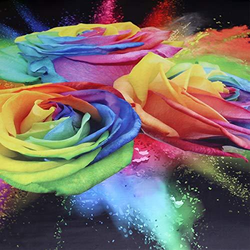 Buy rainbow fragrance set
