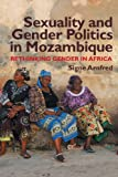 Sexuality and Gender Politics in Mozambique : Re-Thinking Gender in Africa, Arnfred, Signe, 1847010873