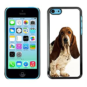 Paccase / SLIM PC / Aliminium Casa Carcasa Funda Case Cover - Basset Hound White Dog Pet Droopy - Apple Iphone 5C