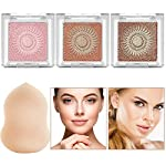 Instant Glow Powder Nude Bronzer Highlighter Kit