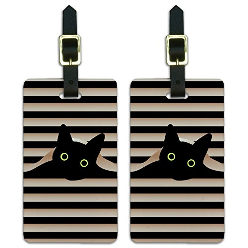 (Black Cat In Window Luggage ID Tags Suitcase Carry-On Cards - Set of)