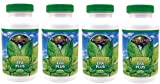 (INTERNATIONAL SHIPPING) 4 Bottles Of 90 Softgels Ultimate EFA Plus Youngevity Omega 3 6 9 Fish Oil Supplement Dr Wallach by Youngevity