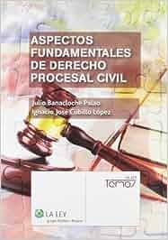 Aspectos fundamentales de Derecho procesal civil Temas La
