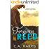 Forgiving Reed (Southern Boys Book 1)