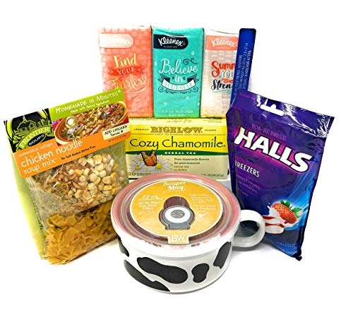 Chicken Noodle Soup Get Well Soon Love & Care Basket for Cold and Flu including Souper Mug and Frontier Soups! Send Love and Quality Items Today! (Bleu Soup)