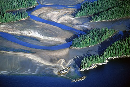 Posterazzi Aerial View of Manzanita River Delta at Low Tide East Behm Canal Misty Fiords National Monument Wilderness Southeast Alaska Poster Print, (17 x 11)