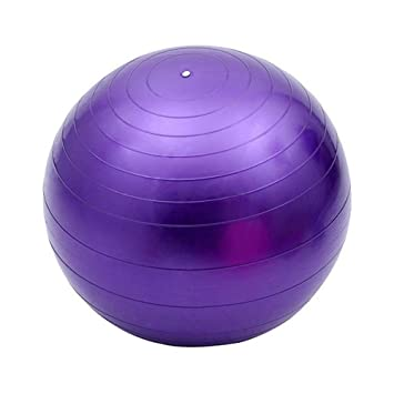 Ssery Fitness Pelota de Ejercicio 65CM Balón de Ejercicio ...