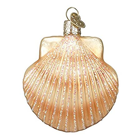 51msnb-kawL._SS450_ Seashell Christmas Ornaments