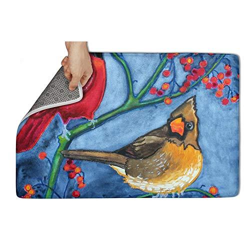 (TAMBC Bird Couple Cardinals Flowers Bath Mats for Shower Door Mats Outside 15.5