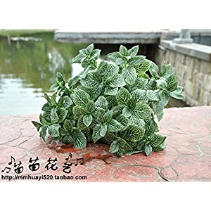 FYYDNZA 1 Pc Artificial Leaf Net Plant Leaf 40 Cm 7 Branches Artificial Plant Green Flowers Plant Grass For Home Deocration 2