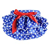 Toddlers Infant Cute Ruffle Bloomers Layers Diaper Cover Flower Pants Skirts by FEITONG