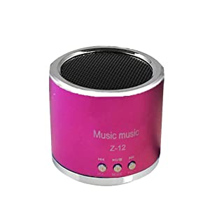 Bluetooth Speaker, ZYooh Mini Speaker FM Radio USB Micro SD TF Card MP3 Player Wireless Portable wireless speaker wireless bluetooth speaker stereo speaker Rose Red