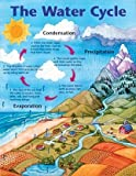The Water Cycle Cheap Chart (Cheap Charts)