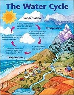 The Water Cycle Cheap Chart Cheap Charts School Specialty