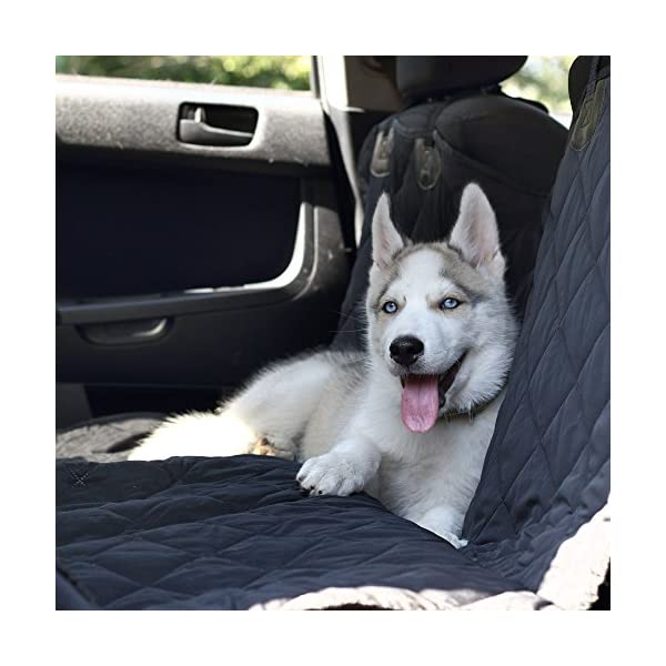 Pet Seat Cover Dog Hammock Back Seat Cover Car BackSeat Hammock Pet Car Seat Cover For Dogs Dog Car Cover Rear Seat Protector Dog Seat Cover Waterproof Durable Nonslip For Cars Trucks Suvs