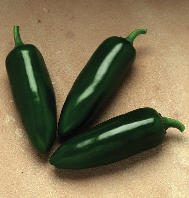 David's Garden Seeds Pepper Jalapeno Jalafuego D3807 (Red) 25 Hybrid Seeds