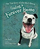 img - for Finding a Forever Home,: The True Story of Ellie Bleu's Rescue (Meet Ellie Bleu) book / textbook / text book
