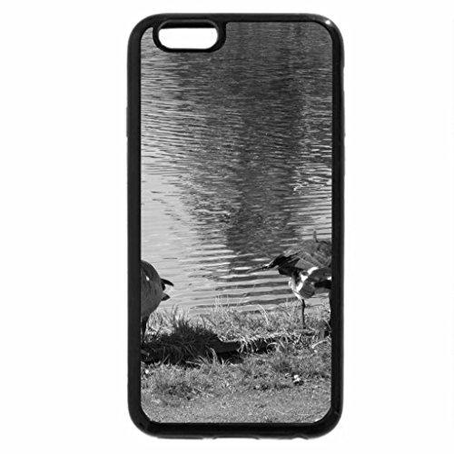 iPhone 6S Plus Case, iPhone 6 Plus Case (Black & White) - Ducks on the lake