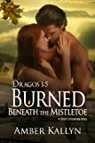 Burned Beneath The Mistletoe: A short Christmas Story (Dragos, Book 1.5)