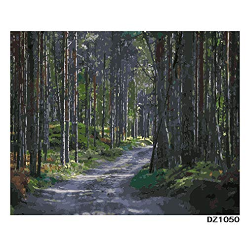 LovetheFamily 数字油絵 数字キット塗り絵 手塗り DIY絵 デジタル油絵 ホーム オフィス装飾 40x50cm 山道の商品画像