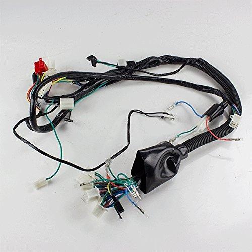 Wiring Loom for TD125-43 (WRLM124):