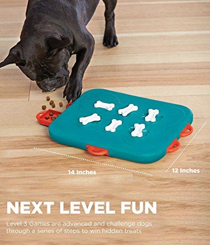 Outward Hound Nina Ottosson Dog Casino Dog Puzzle Toy Dog Game 4