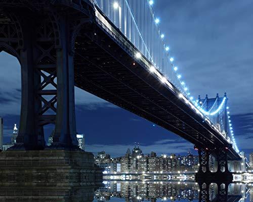 (New York City Skyline and Manhattan Bridge at Night 504 Piece Jigsaw Puzzle 16