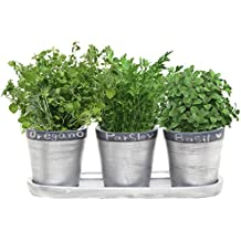 4.7 Inch Ceramic Planter Pots with Chalkboard Rim and Drain Tray, Set of 3, Silver - Tone