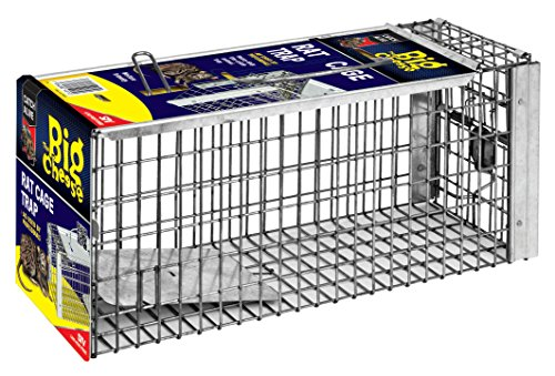 (The Big Cheese TBC075 Rat Cage Trap, Silver)