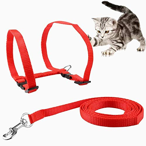 Petlicious & More Cat Adjustable Nylon Harness Strap Collar with Leash Set Small Pet Walking (Red)