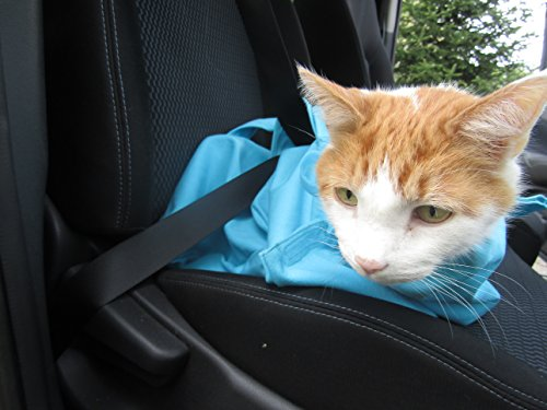 b8bc1a06fe0 Cat-in-the-bag Large Light Blue Cozy Comfort Carrier- Cat Carrier ...
