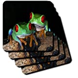 3dRose cst_101747_2 Pair of Colorful Dart Frogs with Red Eyes-Soft Coasters, Set of 8