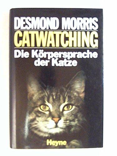 Catwatching: Die Körpersprache der Katze