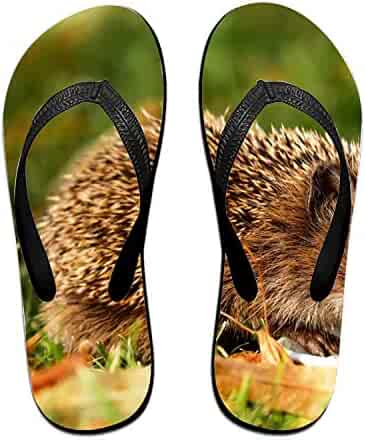 3f3185a52ef7 LISPLA Coloranimal Cacdacdafccdff Printed Flip Flops for Women Home House  Non-Slip Slippers