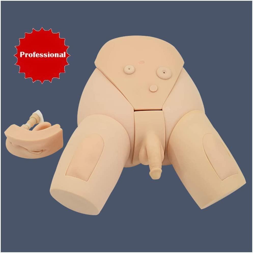 Manikin Teaching Model Catheterization Model Male /& Female Urethral Catheterization Simulator Kit Practice Training Medical Model for Study Display Teaching Medical Model