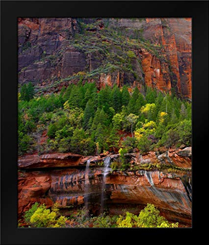 Cascades at Emerald Pools, Zion National Park, Utah 20x24 Framed Art Print by Fitzharris, Tim